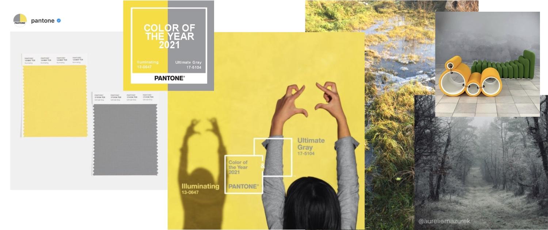 La couleur de l'année - Toiles de Mayenne - La lettre de la Manufacture