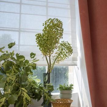 [ Store ou voilage ] Habiller la fenêtre d'un joli store dose la luminosité et donne tout de suite une ambiance raffinée à la pièce. Le tissu apporte de la souplesse et de la douceur en compensant le côté froid et dur du verre, et guide le regard vers la végétation du dehors en masquant l'éventuel vis à vis. Le store en structurant l'espace mettra aussi en valeur les quelques plantes ou objets placés au bord de la fenêtre. Si vous vous demandez quel tissu et quel type de store choisir, demandez-nous, nous serons heureux de vous aider à faire le bon choix. #manufacturetoilesdemayenne #storestoilesdemayenne #rideauxtoilesdemayenne #rideaux #rideau #surmesure #rideauxsurmesure #colorthérapie #savoirfairefrançais #epv #upholstery #décorationintérieure #decoration #homedecor #homeinspiration #home #homesweethome #interiorliving #architectureintérieure #êtrebienchezsoi